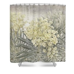 Hint Of Color Shower Curtain