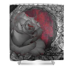 Hints Of Red - Rose Shower Curtain
