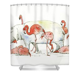 Hippo And Flamingos Shower Curtain