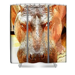 Hippo Cartoon Shower Curtain by Ericamaxine Price