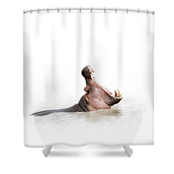Hippo Mouth Wide Open Isolated On White Shower Curtain