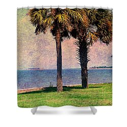 Historic Fort Sumter Charleston Sc Shower Curtain by Susanne Van Hulst
