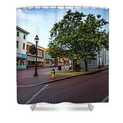 Historic Streets Shower Curtain