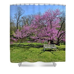 Historic Walnford Shower Curtain by Sami Martin