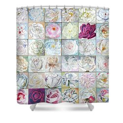 History Of Art Shower Curtain