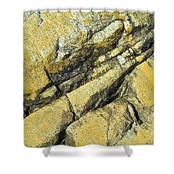 History Of Earth 2 Shower Curtain by Heiko Koehrer-Wagner