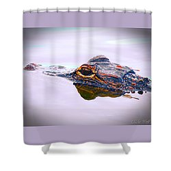 Hitchin A Ride Shower Curtain