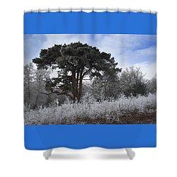 Hoar Frost Shower Curtain