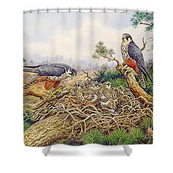 Hobbys At Their Nest Shower Curtain by Carl Donner