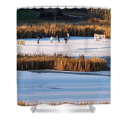 Hockey Game Shower Curtain by Will Borden