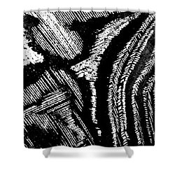 Hog Fish Float Three Shower Curtain by Expressionistart studio Priscilla Batzell