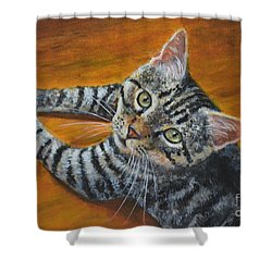 Holding Down The Floor Shower Curtain by Jana Baker