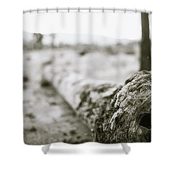 Hollow Shower Curtain
