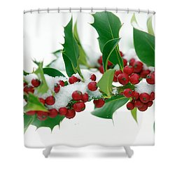 Shower Curtain featuring the photograph Holly Berries On White by Sharon Talson