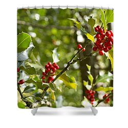 Shower Curtain featuring the photograph Holly With Berries by Chevy Fleet