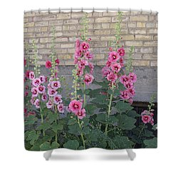 Hollyhocks Shower Curtain by Cynthia Powell