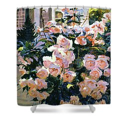 Hollywood Cottage Garden Roses Shower Curtain