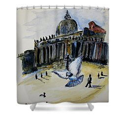 Holy Pigeons Shower Curtain by Clyde J Kell