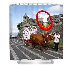 Holy Spirit Festivities Shower Curtain by Gaspar Avila