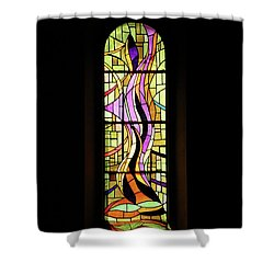 Shower Curtain featuring the photograph Holy Spirit by Rasma Bertz