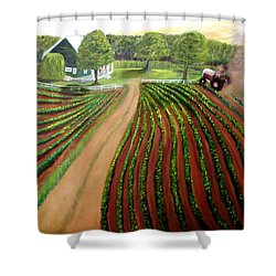 Home Again Shower Curtain by Tina Swindell