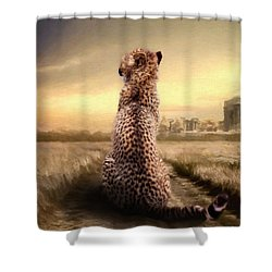 Shower Curtain featuring the photograph Home by Christine Sponchia