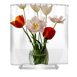 Home Grown Shower Curtain by Marilyn Hunt