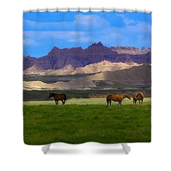 Shower Curtain featuring the photograph Home by Kadek Susanto