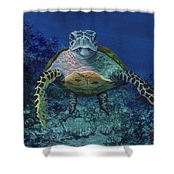 Shower Curtain featuring the painting Home Of The Honu by Darice Machel McGuire