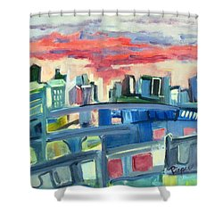 Home To The Softer Side Of City Shower Curtain