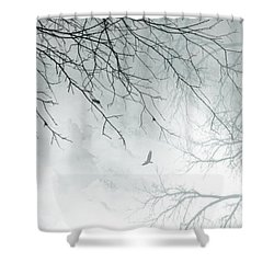 Shower Curtain featuring the digital art Home by Trilby Cole