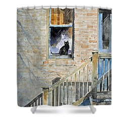 Homecoming Shower Curtain by Monte Toon