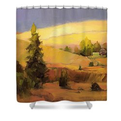 Homeland 2 Shower Curtain
