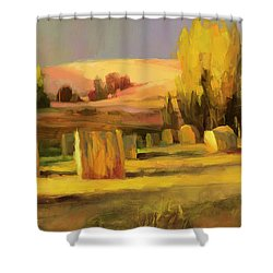 Homeland 3 Shower Curtain