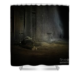 Homeless In China Shower Curtain
