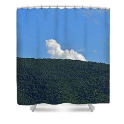 Homer Simson Shower Curtain