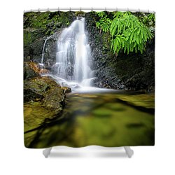 Homesite Falls Autumn Serenity Shower Curtain