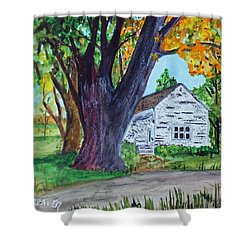 Homestead Colors Shower Curtain by Jack G  Brauer