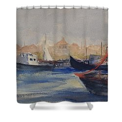 Homeward Bound Shower Curtain by Heidi Patricio-Nadon