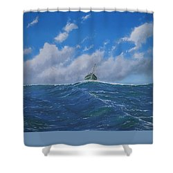 Homeward Bound Shower Curtain by Paul Newcastle