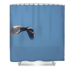 Shower Curtain featuring the photograph Homing Home by David Bearden