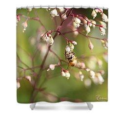 Honey Acrobat Shower Curtain