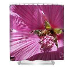 Honey Bee Shower Curtain