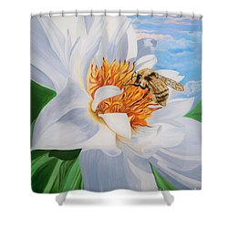 Flygende Lammet Productions     Honey Bee On White Flower Shower Curtain