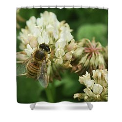 Shower Curtain featuring the photograph Honey Bee by Pamela Walton