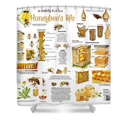 Honey Bees Infographic Shower Curtain