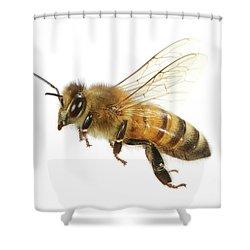 Honey Bound Shower Curtain