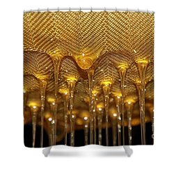 Shower Curtain featuring the photograph Honey Drip by Stephen Mitchell