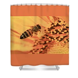 Shower Curtain featuring the photograph Honeybee And Sunflower by Chris Berry
