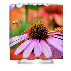 Honeybee Flying To A Coneflower Shower Curtain